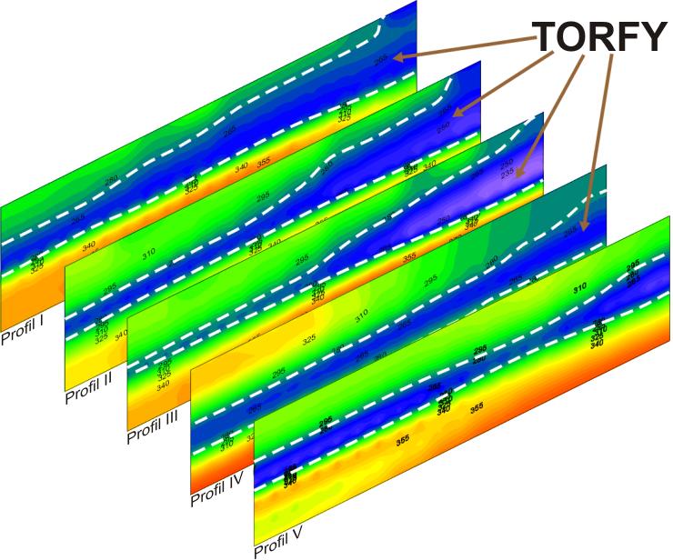 GeoSpectrum - Przekroje sejsmiczne MASW odwzorowujące zmiany miąższości gruntów nienośnych w celu określenia kubatury torfów