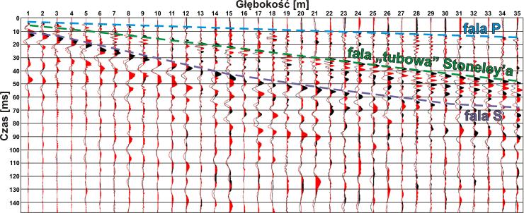 GeoSpectrum - Przykład dwóch nałożonych na siebie rekordów sejsmicznych z badań techniką ?downhole?, dla przeciwnych polaryzacji źródła fali poprzecznej wraz z rodzajami zarejestrowanych fal